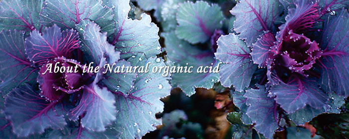 About the Natural organic acid